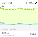 lean vs fat